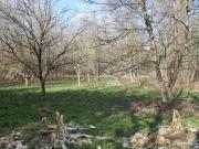 Ancien moulin du XVIIème avec sa petite grange sur terrain boisé de 1.9 ha