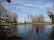 Beau Château de 1641 avec dépendances et lac à seulement 35 mn de Toulouse.