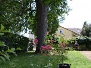 Maison de ville au centre de Cahors, 7 pièces avec jardin