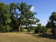 Belle demeure proche Cahors avec grange, gite, pigeonnier, tennis.